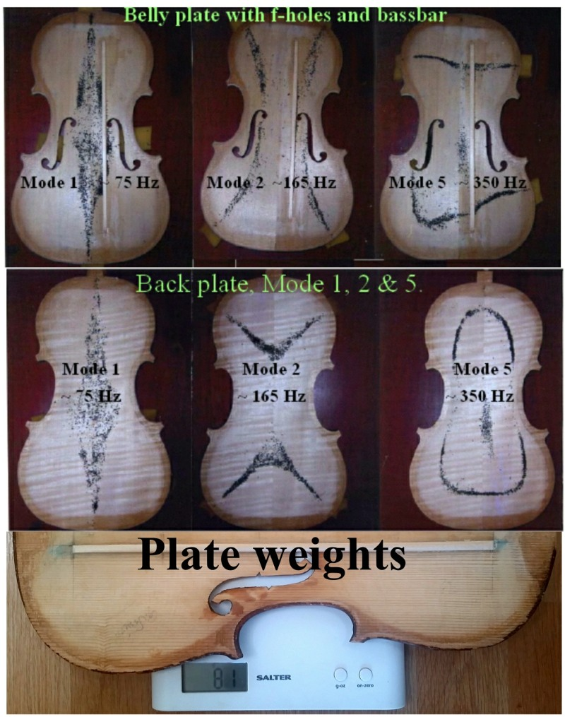 Violin plate Modes and Weights 1.1 smll